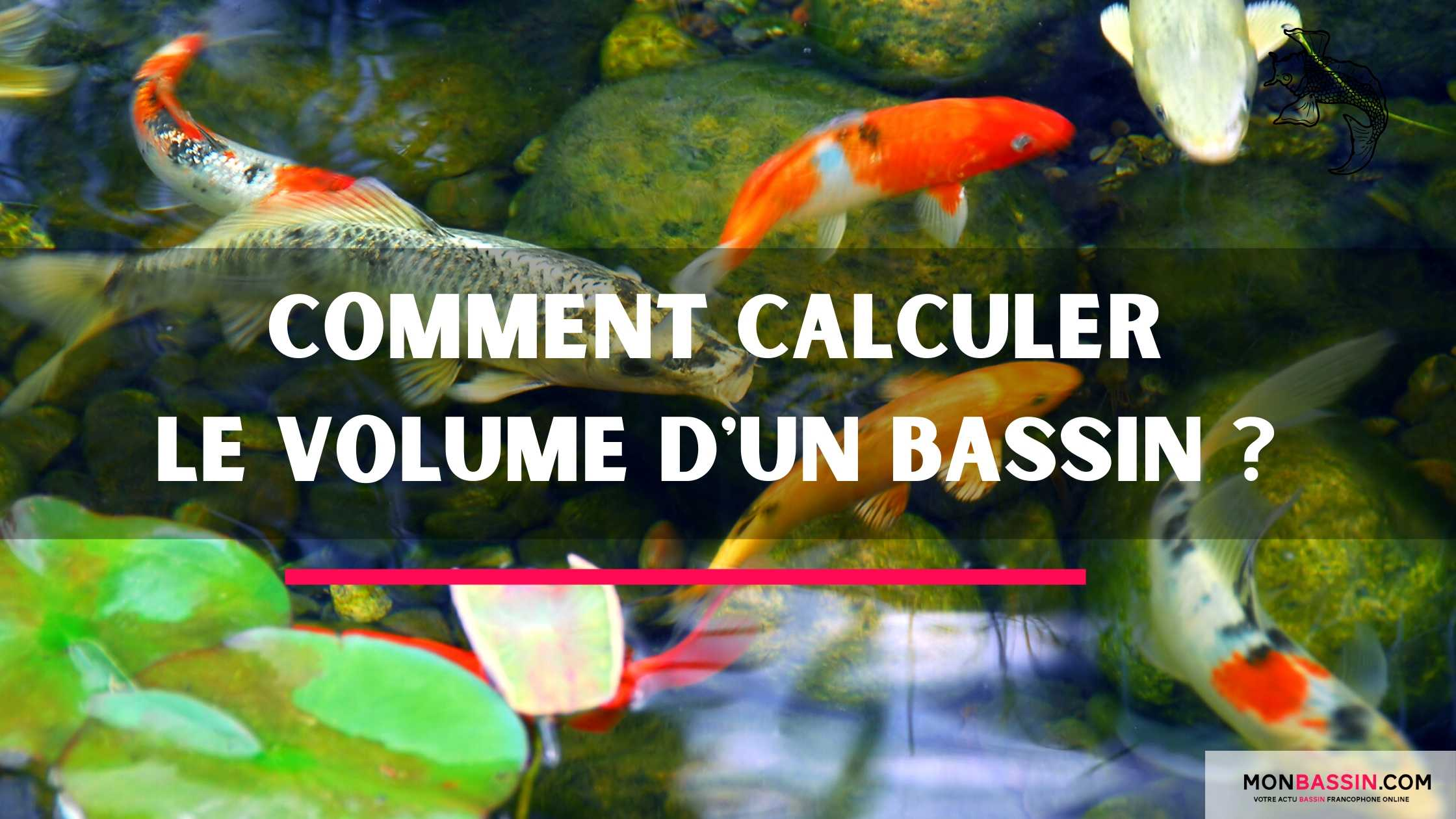 Comment calculer le volume de mon étang?